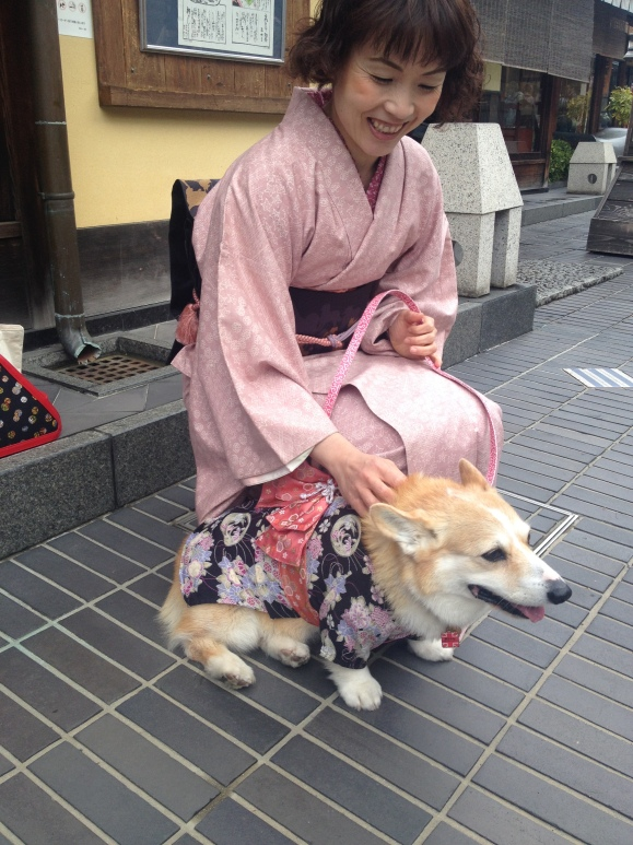 Just for funsies, I found an owner who dressed her corgi pup in a kimono outfit. SO MUCH CUTE.